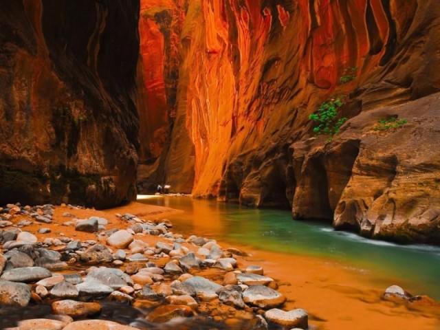 Kanion w Parku Narodowym Zion